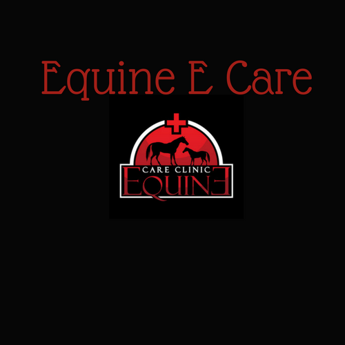 digital marketing, hjennifer Gale, pink hat digital, equine e care, website development, membership platforms